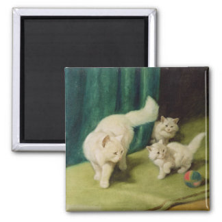 White Persian Cat with Two Kittens Square Magnet