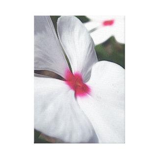 White Petals - Floral Illustration Canvas Print