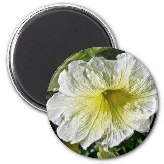White Petunia Series Coordinating Items 6 Cm Round Magnet