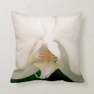 White Phalaenopsis Orchid Cushion