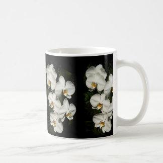 White phalaenopsis orchids basic white mug