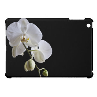 White Phalaenopsis Orchids on Black Cover For The iPad Mini
