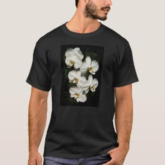 White phalaenopsis orchids T-Shirt