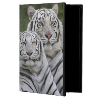 White phase, Bengal Tiger, Tigris Cover For iPad Air