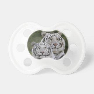 White phase, Bengal Tiger, Tigris Dummy