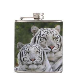White phase, Bengal Tiger, Tigris Hip Flask