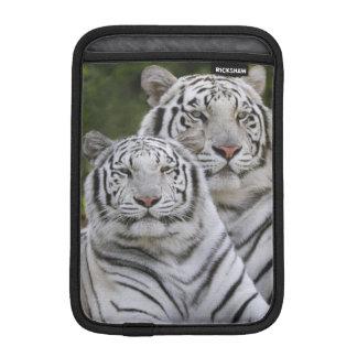 White phase, Bengal Tiger, Tigris iPad Mini Sleeve