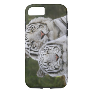 White phase, Bengal Tiger, Tigris iPhone 8/7 Case