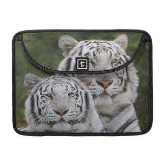 White phase, Bengal Tiger, Tigris Sleeve For MacBook Pro