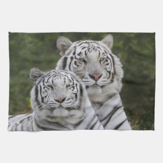 White phase, Bengal Tiger, Tigris Tea Towel