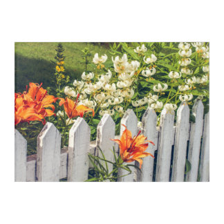 White Picket Fence & Flowers Acrylic Print