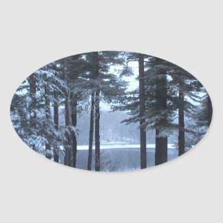 White Pines in Blue Light --- Oval Sticker
