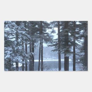 White Pines in Blue Light --- Rectangular Sticker