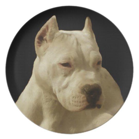 White Pitbull dog decorative plate