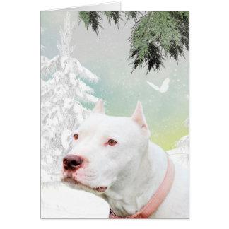 White pitbull in snow card