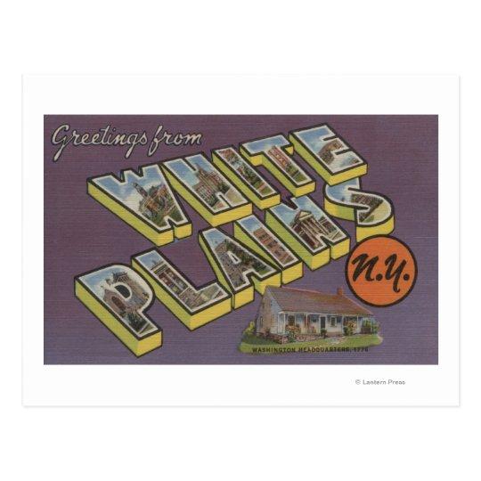 White Plains, New York - Large Letter Scenes Postcard