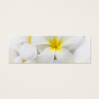 White Plumeria Flower Frangipani Floral Flowers Mini Business Card