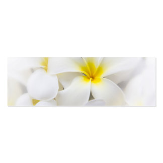 White Plumeria Flower Frangipani Floral Flowers Pack Of Skinny Business Cards