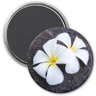 White Plumeria Flower Frangipani Floral Lava Rock 7.5 Cm Round Magnet