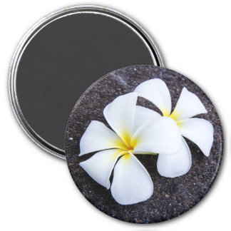 White Plumeria Flower Frangipani Floral Lava Rock Magnet
