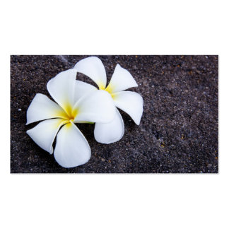 White Plumeria Flower Frangipani Floral Lava Rock Pack Of Standard Business Cards
