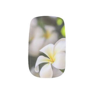 White Plumeria Nail Art