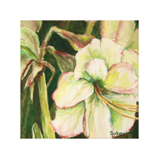 White Poinsetta Canvas Print