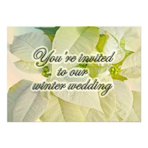 White Poinsettias Winter Wedding Pre-Invitation