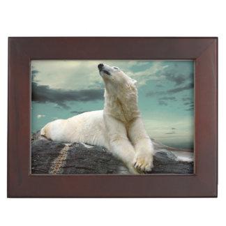 White Polar Bear Hunter on rock Memory Boxes