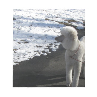 White Poodle by the Snow Notepad