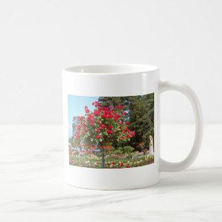 White Public Gardens, Geneva, Switzerland flowers Coffee Mugs