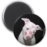 White Puppy Dog Love, Sealed with Lipstick Kisses 6 Cm Round Magnet