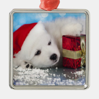 White Puppy With A Gift In Paws Christmas Ornament