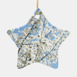 White Purity Ceramic Star Decoration