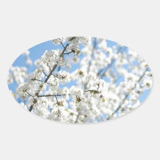 White Purity Oval Sticker