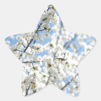 White Purity Star Sticker