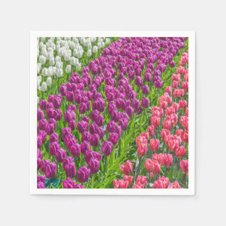 White purple and pink tulips disposable serviette