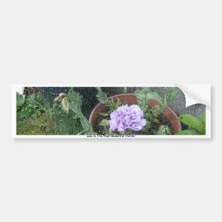 White & Purple Lisianthas Bumper Sticker