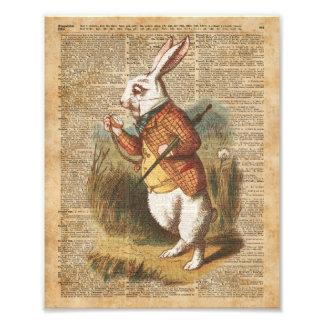 White Rabbit Alice in Wonderland Vintage Art Photo