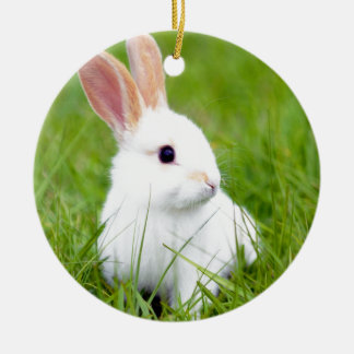 White Rabbit Christmas Ornament