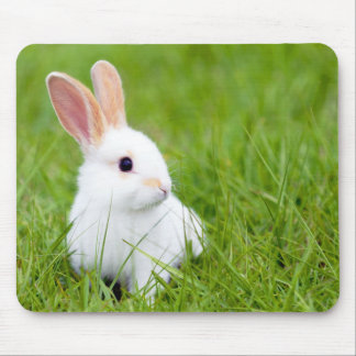 White Rabbit Mouse Mat