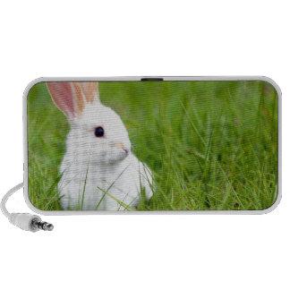 White Rabbit Travel Speaker