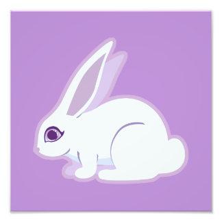White Rabbit With Long Ears Art Art Photo