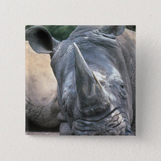 White Rhino 15 Cm Square Badge