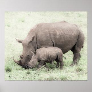 White Rhino & Baby Poster
