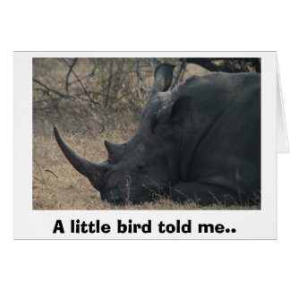White Rhino gets Advice from a Little Bird, A l... Card