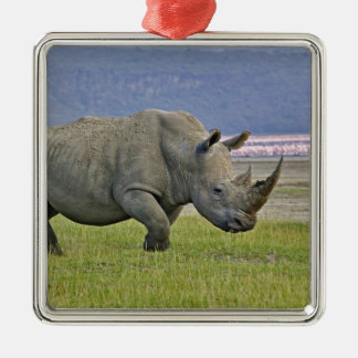White Rhinoceros and distant Lesser Flamingos, Christmas Ornament