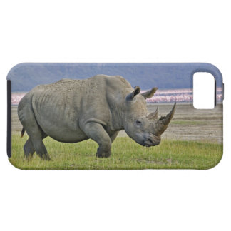 White Rhinoceros and distant Lesser Flamingos, iPhone 5 Covers
