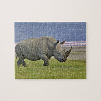 White Rhinoceros and distant Lesser Flamingos, Jigsaw Puzzle