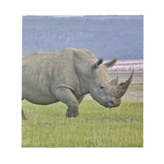 White Rhinoceros and distant Lesser Flamingos, Notepad